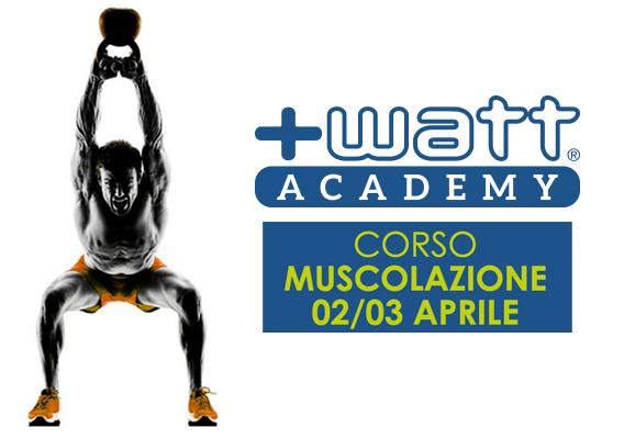 corso-muscolazione-watt-academy-franco-bertoli